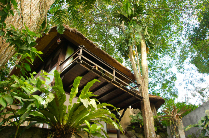 Magical treehouse - Stunning view! https://www.airbnb.com/rooms/792724