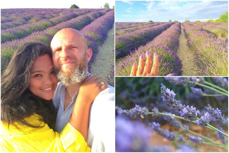 Ladang Bunga Lavender di Provence, Prancis Selatan